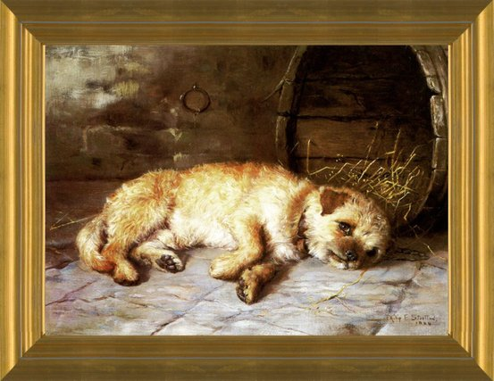 Art Prints Of Home A Border Terrier By Philip Eustace Stretton